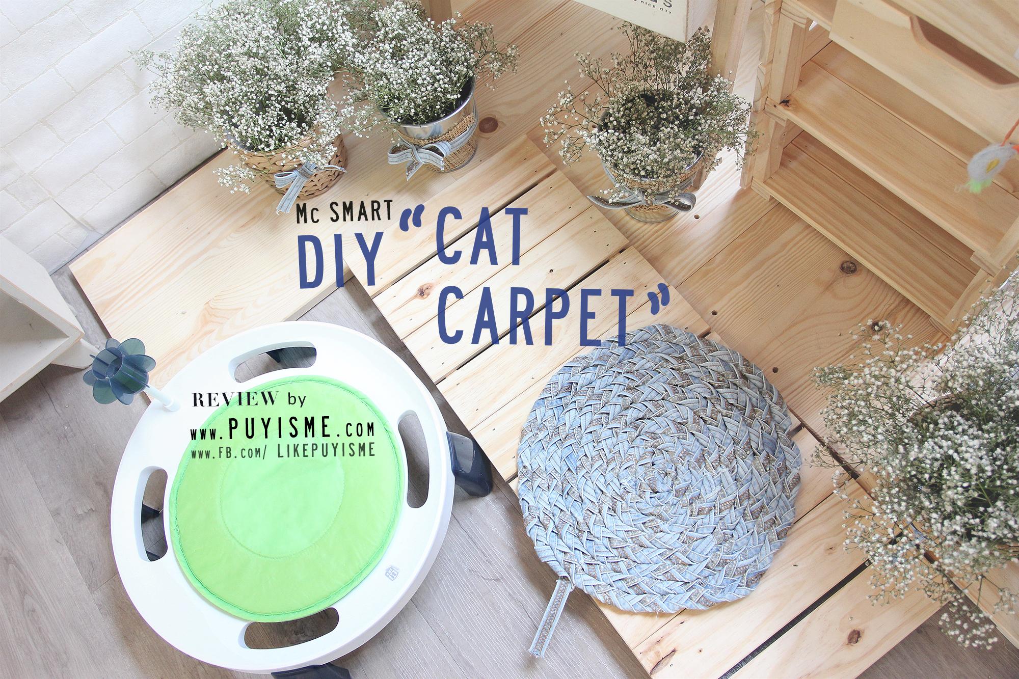 DIY Cat Carpet 01