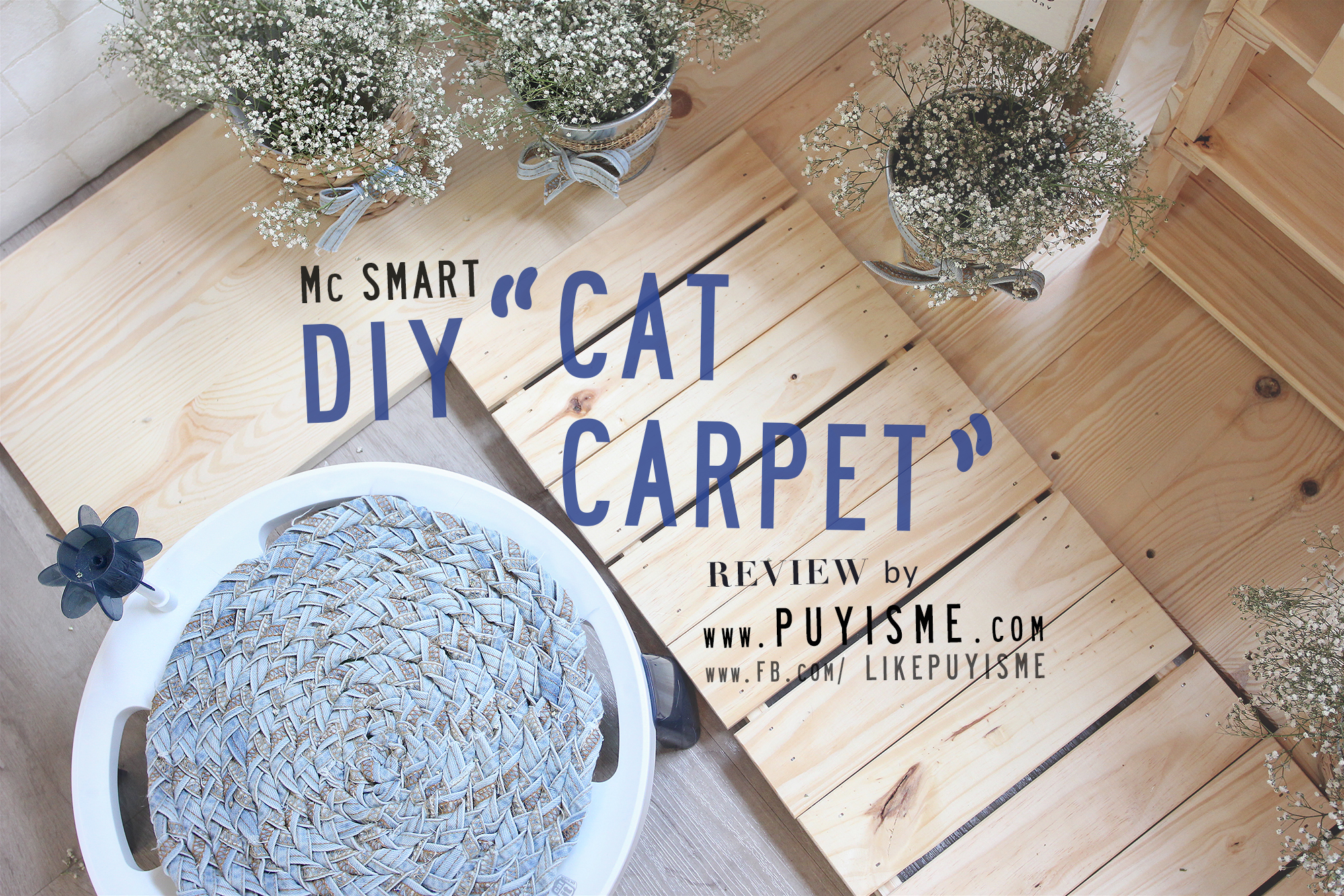 DIY Cat Carpet 02