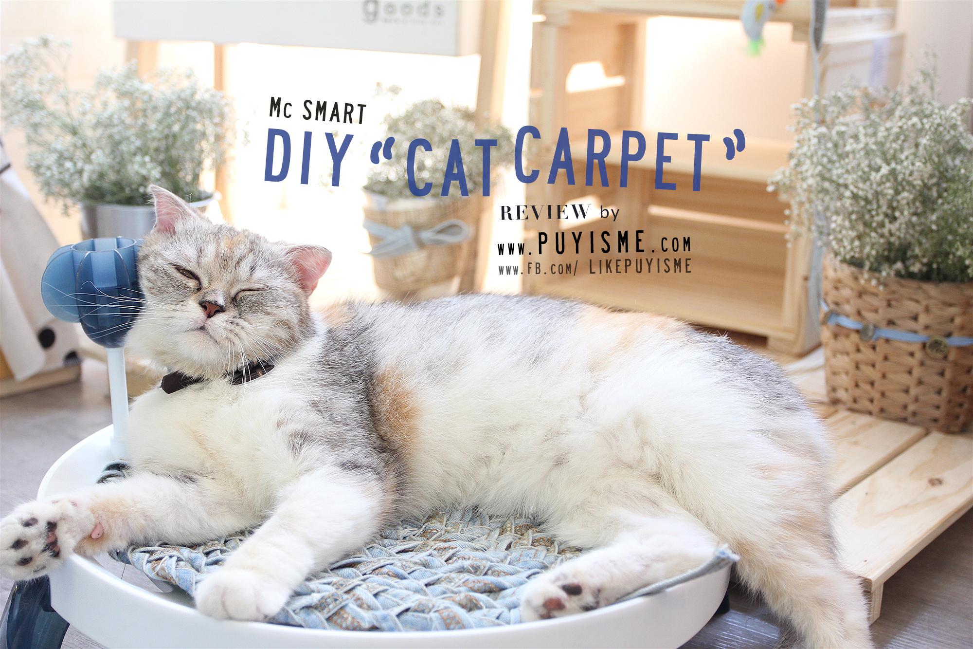 DIY Cat Carpet 07