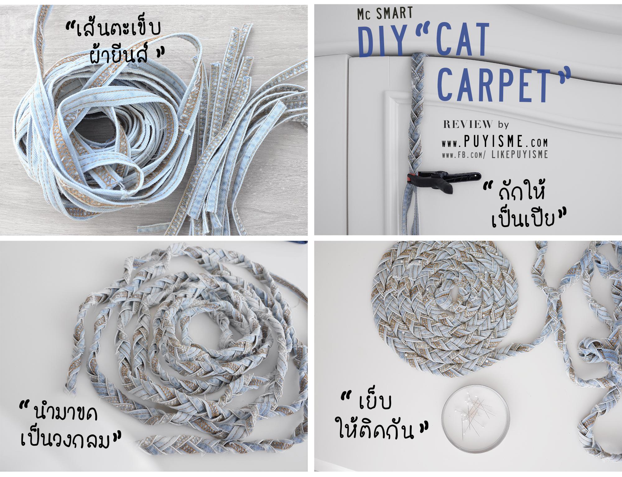 DIY Cat Carpet Howto 01