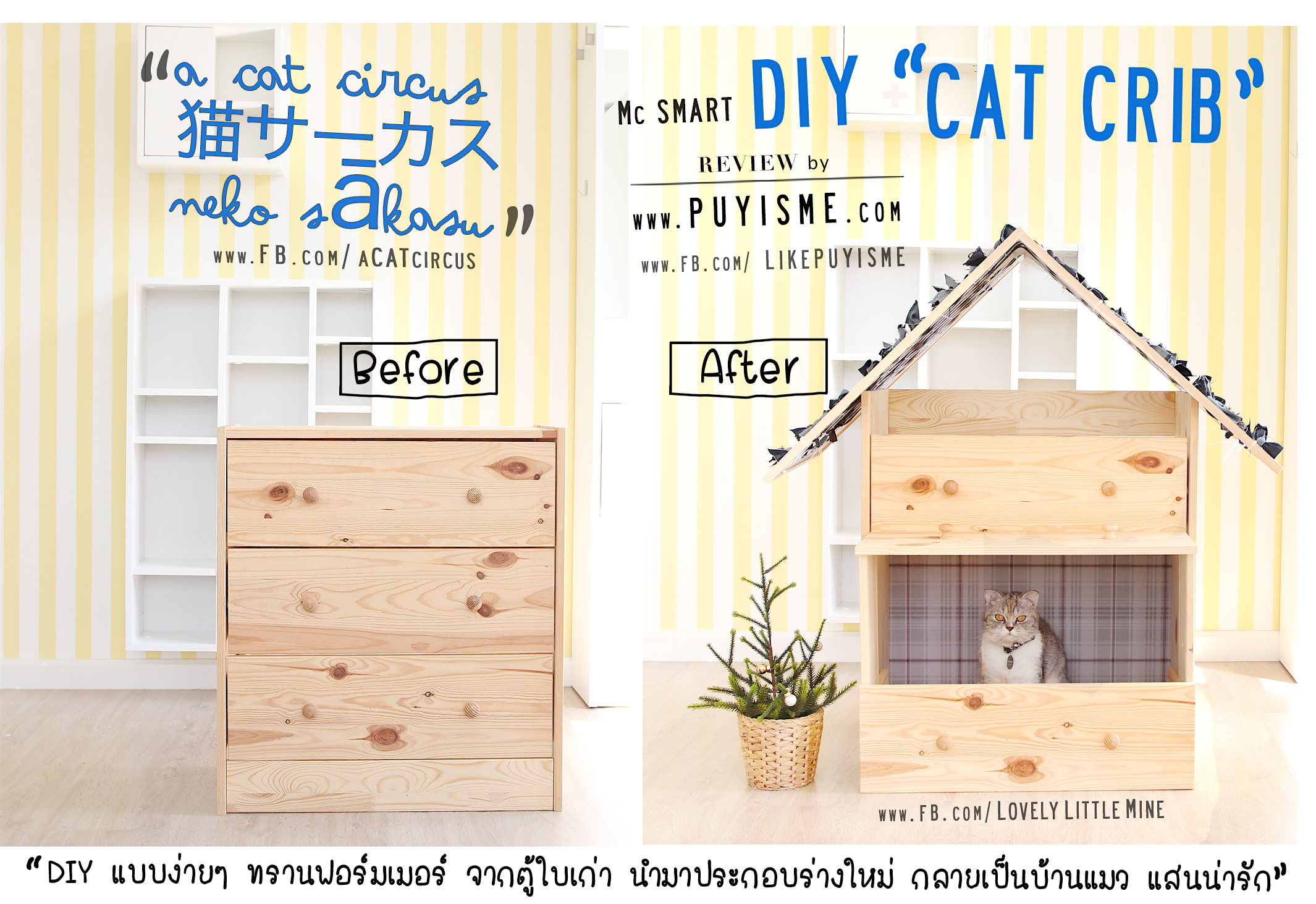 Before-After McJean CatCrib